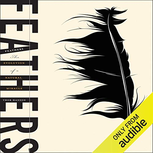 Feathers  By  cover art