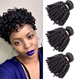 VIOLET Brazilian Funmi Hair 3 Bundles Spiral Curl Hair Bundles Short Curly Weave 9A 100% Unprocessed Brazilian Human Hair Extensions Full Head Natural Black Color 300g (8' 8' 8')