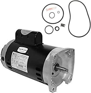 Puri Tech Sta-Rite Max-E-Pro 2HP P6R6G-208L Replacement Motor Kit AO Smith SQ1202 w/GO-KIT-79