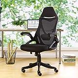 BERLMAN Ergonomic Mesh Office Chair Computer Chair with Flip-up Arms Adjustable Lumbar Support Desk Chair (Black)