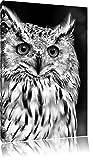 Pixxprint aufmerksame Waldohreule als Leinwandbild | Größe: 60x40 | Wandbild| Kunstdruck | fertig bespannt