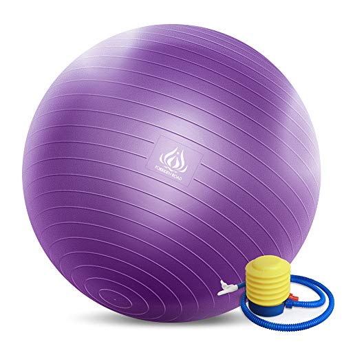 Forbidden Road Exercise Yoga Ball (4 Sizes, 4 Colors) 200 lbs Anti-Burst Slip-Resistant Yoga Balance Stability Swiss Ball for Fitness Exercise with Free Air Pump (Purple, Diameter: 60-65cm)
