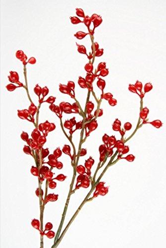 Shophaus24 3 Deko Zweige mit Roten Beeren Herbstzweige. Länge 50cm. 3 Stück