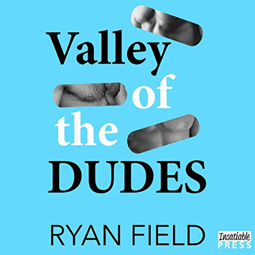 Valley of the Dudes audiobook cover art