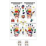 Sport-Tec Reflexzonen Hand Mini-Poster Anatomie 34x24 cm medizinische Lehrmittel -