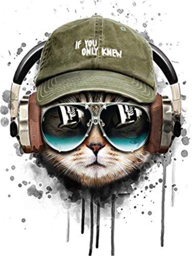 YEESAM ART DIY Ölgemälde Malen nach Zahlen Erwachsene Kinder, Musik Katze Cool Katze Zahlenmalerei ab 5 Öl Wandkunst (Katze, mit Rahmen)