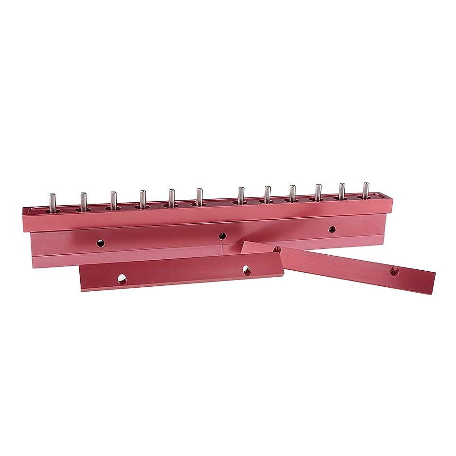 雷雨貞インシュレータB Blesiya 12.1mm口紅型 リップスティック 12穴 手作り化粧品 メイクアップ 2タイプ選べ - 3way