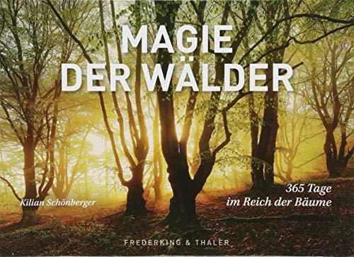 Tischaufsteller Magie der Wälder: 365 Tage im Reich der Bäume