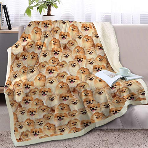 BlessLiving Fuzzy Hundedecke für Kinder, Erwachsene, süße Welpe, Fleece-Decke, wendbar, Tier-Muster, Sherpa, Mikrofaser, Pomeranian, Twin/Double (150x200cm)