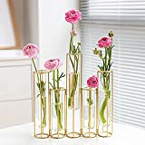 Bigsee Test Tube Vase for Flowers, Glass Vase with Metal Stand Racks Hydroponic Test TubeVase Set of 5, Gold Hinged Plant Vases Display Set Table Centerpieces Vase for Home Decor (Gold)