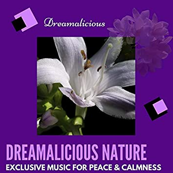 Dreamalicious Nature - Exclusive Music For Peace & Calmness