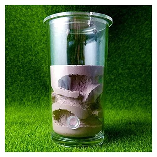 M3 Decorium DIY HET Nest Ant FRAND Villa Villa Hoja Torre Torre Caja DE Pantalla Hábitat Educativo para el Taller ecológico de la Hormiga (Color : Purple, Size : 13x6.7cm)