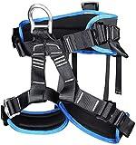 JTSYUXN Absturzsicherung Klettergurte Sicherheitsgurt Taille Klettergurt,Baumpflege Schutz Gürtel Sicherheitsgurt für Damen Herren (Color : Blue)