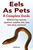 Eels As Pets: Where to buy, species, aquarium, supplies, diet, care, tank setup, and more! A Complete Guide.