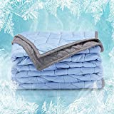 SLEEP ZONE Athlete-Grade Cooling Throw Blanket Reversible Lightweight Breathable Jersey Cotton Cool Blanket Absorbs Heat for Summer Night Sweats (Blue+Grey, Twin, 80x60)
