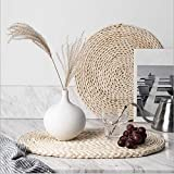 6 Pack Corn Husk Woven Placemats,Natural Round Braided Table Mats, Weave Placemats for Dinner / Coffee Table, 13.8 inch