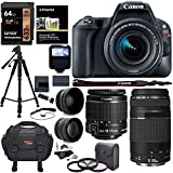 Canon EOS Rebel SL2 DSLR Camera, EF-S 18-55mm STM,+ Canon 75-300mm Telephoto Lens, Full Manufacture Warranty + Accessories