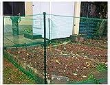 Valla Vegetal Anti-Bestia Huerto Anti-Gato Red jardinería Valla Anti-Gato Anti-Perro Anti-Animal Red Uptodate