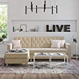 GGAA Sofa Couch Sofa Sofa Bed CosmoLiving by Cosmopolitan Liberty Sectional Storage,Black Velvet Futon (Color : Ivory)