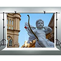 FHZON 10x7フィート 小さな天使の像 背景幕 写真撮影 キューピッドの矢 背景テーマ パーティー 写真ブース ビデオ スタジオ 撮影小道具 GEFH395
