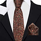 Axlon Men's Micro Polyester Paisley Necktie Set with Pocket Square and Lapel Pin (Brown, Free Size)
