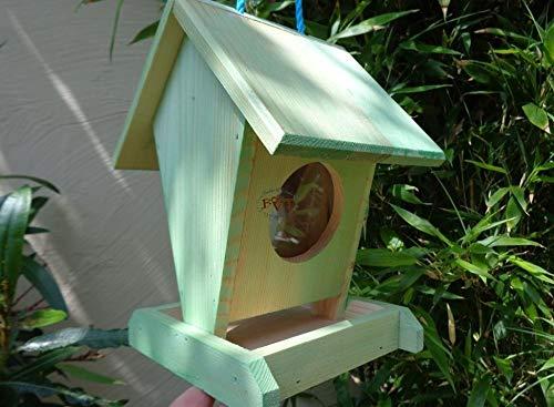 Futterhaus BTV-VOFU1K-moos002 PREMIUM Vogelhaus Vogelfutterhaus moosgrün grün natur Nistkasten Bienen Marienkäfer, als Ergänzung zum Meisen Nistkasten Meisenkasten oder zum Insektenhotel, Futterstation für Vögel, Vogelhäuschen / Vogelvilla zum Hängen und Aufstellen von BTV