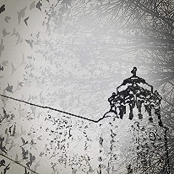 Enter the Crows
