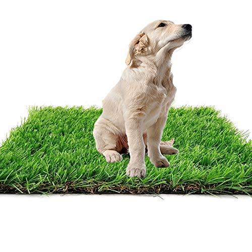Kunstrasen Teppich für den Innen und Außenbereich, Florhöhe 35mm, Rasenteppic Teppich für Hunde, Garten und Fußmatte, gummierte Unterseite mit Drainagelöchern (1m x1.5m)