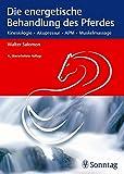 Die energetische Behandlung des Pferdes: Kinesiologie - Akupressur - APM - Muskelmassage - Walter Salomon