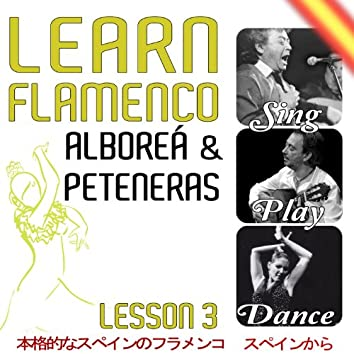 Learn Flamenco. Sing, Play And Dance Alboreá And Peteneras. Lesson 3