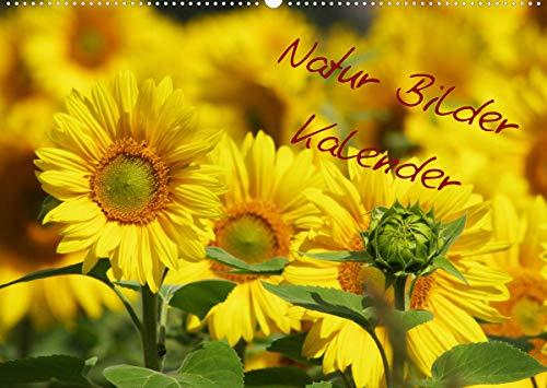 Natur Bilder Kalender (Wandkalender...