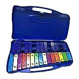 aggiornamento 2020 xilofono colorato a 25 note, set di percussioni strumenti musicali per bambini strumenti musicali educativi con 2 bacchette ideale per principianti e studenti