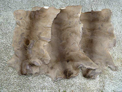 Robert Tartufferie Rehe Haut Hide Teppich Felle TAXIDERMIE Fell zart Dick Winter Coat Jagd Collectible Zelt Camping Home Decor Kamin