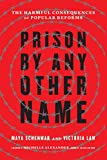 Prison by Any Other Name: The Harmful Consequences of Popular Reforms