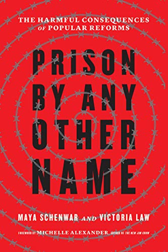 Image of Prison by Any Other Name: The Harmful Consequences of Popular Reforms