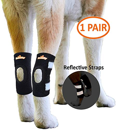 NeoAlly Cat Small Dog Ankle Brace Canine Rear Leg Brace [Short Version] with Safety Reflective Straps for Hind Leg Wounds Heal and Injuries and...