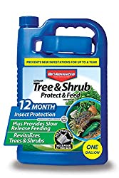 Bio Advanced 701615 Tree and Shrub Protect and Feed Concentrate