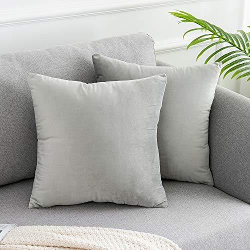 WLNUI Juego de 2 fundas de almohada de terciopelo suave gris claro de 45,7 x 45,7 cm, cuadradas, decorativas, fundas de cojín para sofá, sofá, hogar, decoración de granja