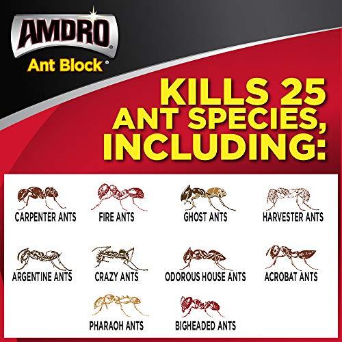 AMDRO Ant Block Home Perimeter Ant Species