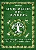 Les plantes des druides : Symbolisme, pouvoirs magiques et recettes de...