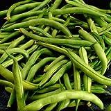 SNAP BEANS GREEN FRESH PRODUCE FRUIT VEGETABLES PER POUND