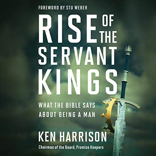 Rise of the Servant Kings audiobook cover art