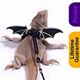 WATFOON Adjustable Bearded Dragon Harness Lizard Leash Reptile Training Lead Cool Wings for Amphibians Chameleon Leopard Gecko Anole Guinea Pig Ferrets Hamster Rats Small Pet Animals (L, Black Purple)