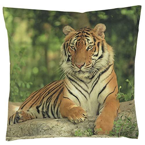 Kissenhüllen Kissenbezug 40x40 Kissen Dekokissen Kuschelkissen Tiermotive (Animal Tiger)