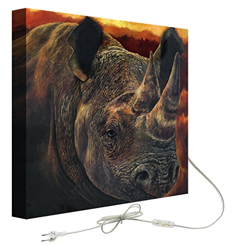 Decoralive Rinoceronte Cuadro retroiluminado, Tela, Multicolor, 75.00x75.00x5.00 cm