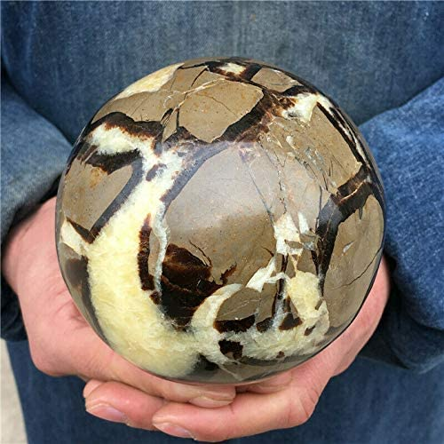 Collectible Crystals 3.58Lb Natural Qua Beauty products Dragon Septarian High quality Sphere