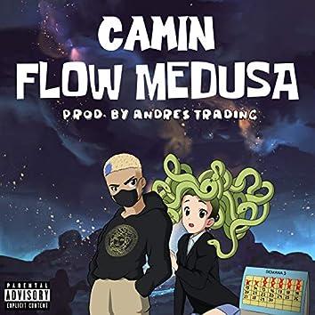 Flow Medusa