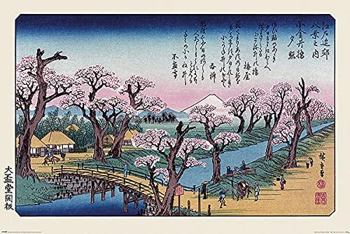 Hiroshige Mount Fuji Koganei Bridge Unisex Poster multicolour, Paper,