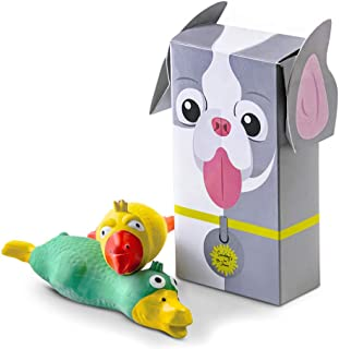 Sundays In June Squeaky Dog Toys Two Pack