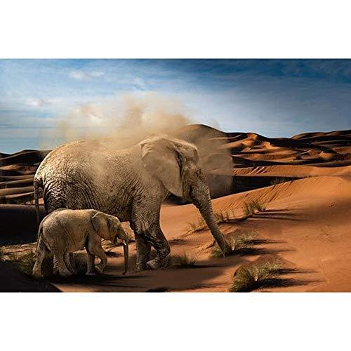 LANSUER 5D Diamant-Painting-Kits für Erwachsene Diamant Malerei Voll Runde Bohrgerät für Hauptwanddekor Elephants In The Desert 15.7x11.8in 1 Pack by